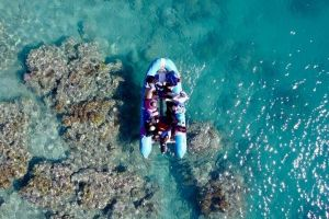 Glass-bottom boat tour with Whitehaven Beach - Accommodation Nelson Bay