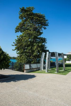 A Cup of Culture in Mackay - Accommodation Nelson Bay