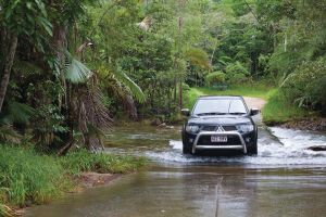 The Pioneer Valley and Eungella National Park - Accommodation Nelson Bay