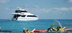 Seastar Cruises - Accommodation Nelson Bay