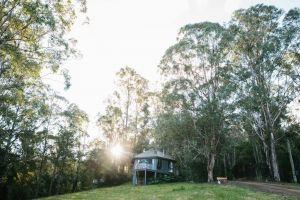 Bluegums Cabins - Accommodation Nelson Bay